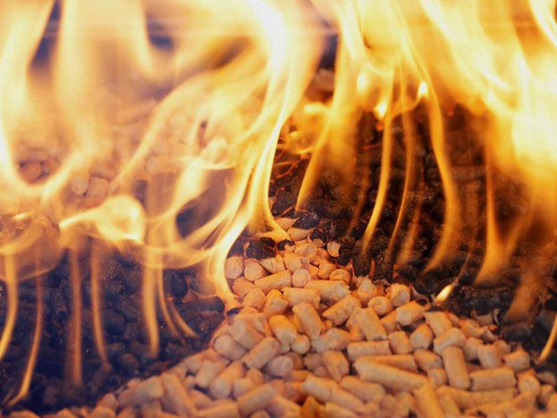 История пеллетного топлива